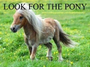 ponyblog