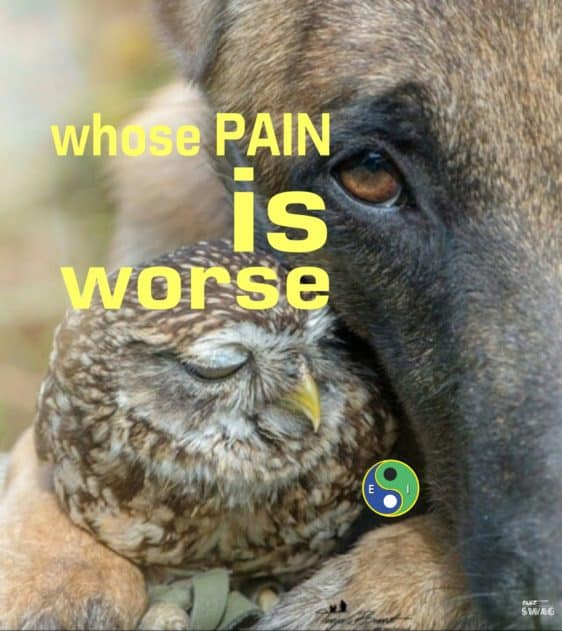 Whose Pain is Worse – Using Empathy to Heal